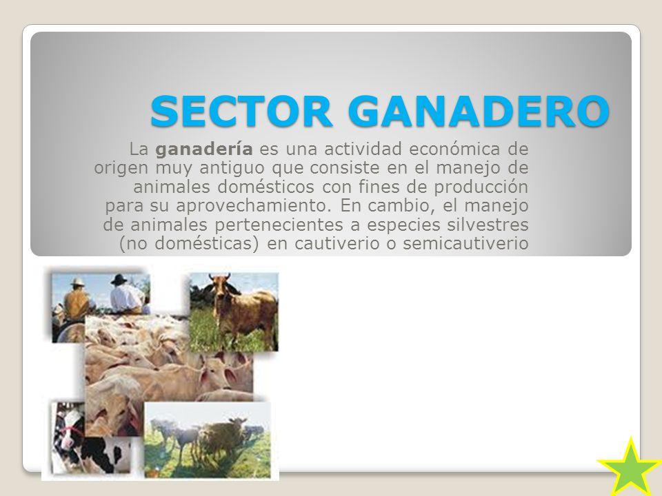 SECTOR GANADERO
