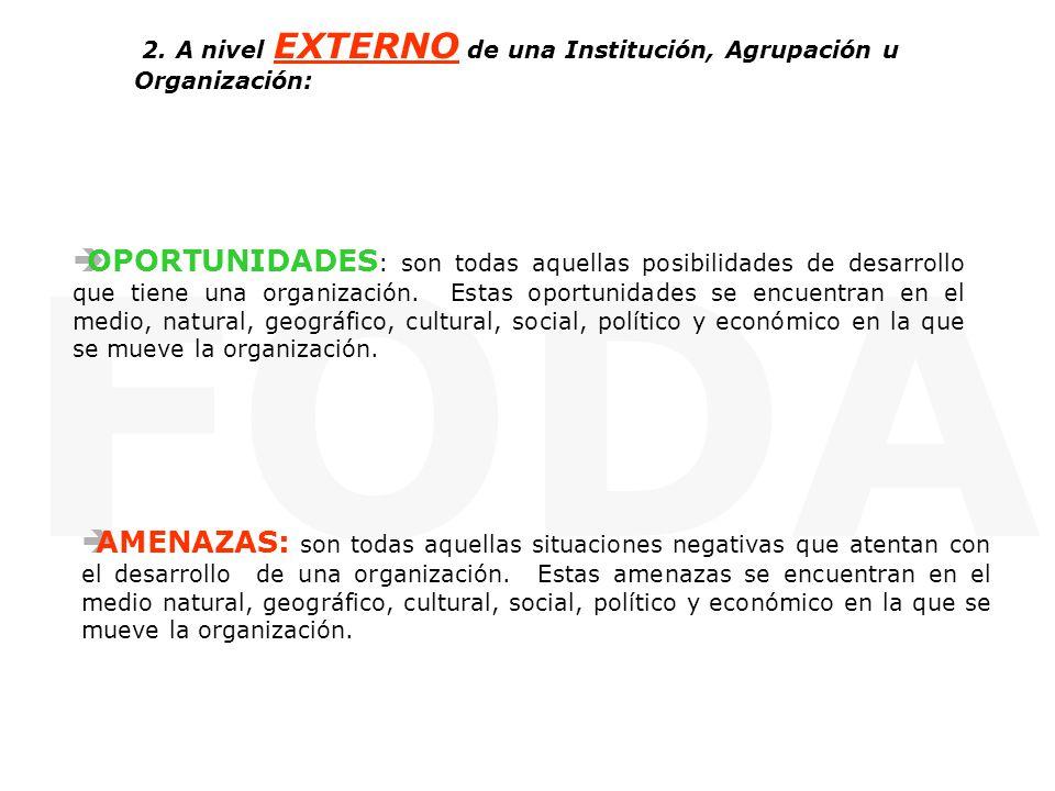 2. A nivel EXTERNO de una Institución, Agrupación u Organización: