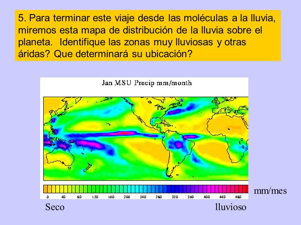 5. Para terminar este viaje desde las moléculas a la lluvia, miremos esta mapa de distribución de la lluvia sobre el planeta. Identifique las zonas muy lluviosas y otras áridas Que determinará su ubicación