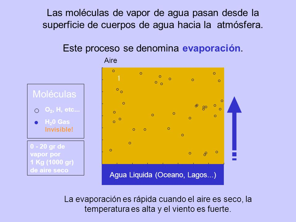 Este proceso se denomina evaporación.