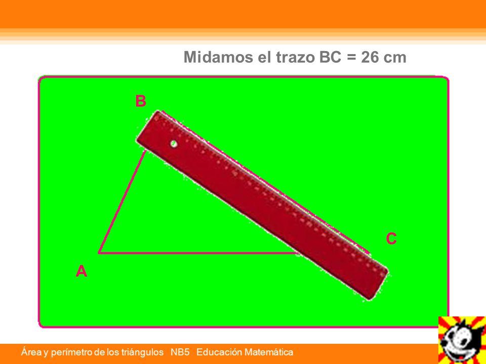 Midamos el trazo BC = 26 cm B C A