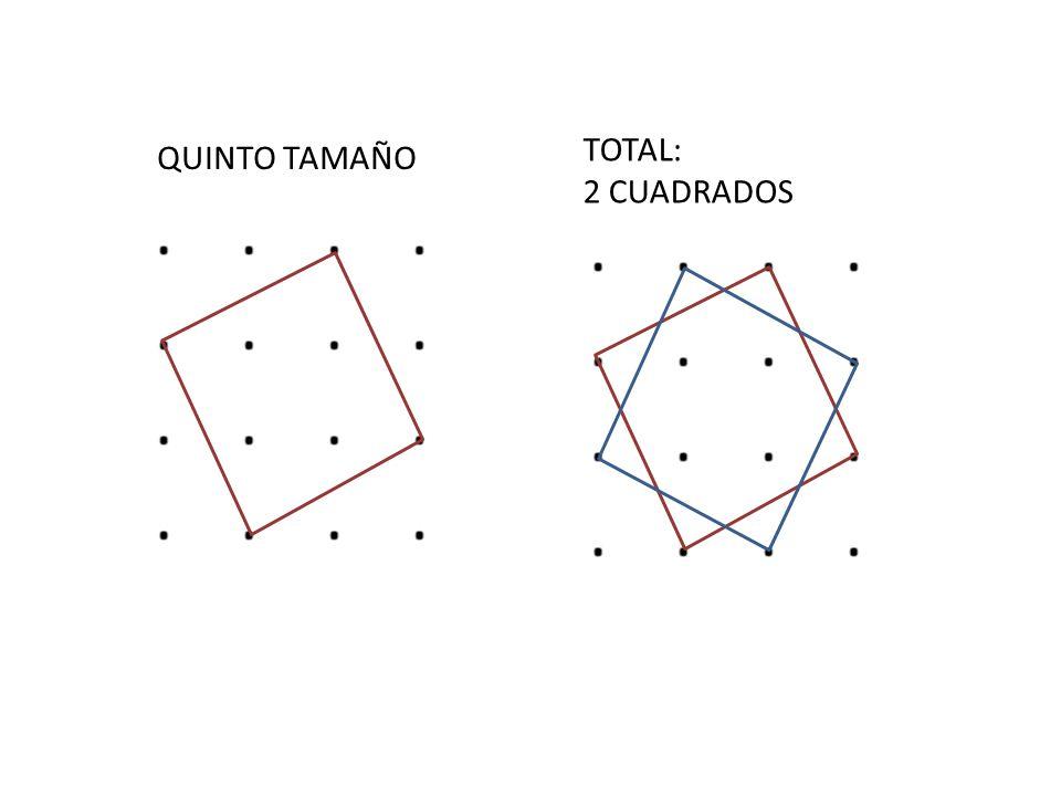 TOTAL: 2 CUADRADOS QUINTO TAMAÑO