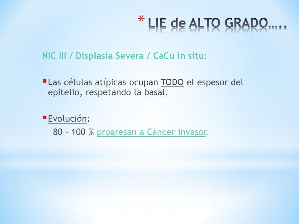 LIE de ALTO GRADO….. NIC III / Displasia Severa / CaCu in situ: