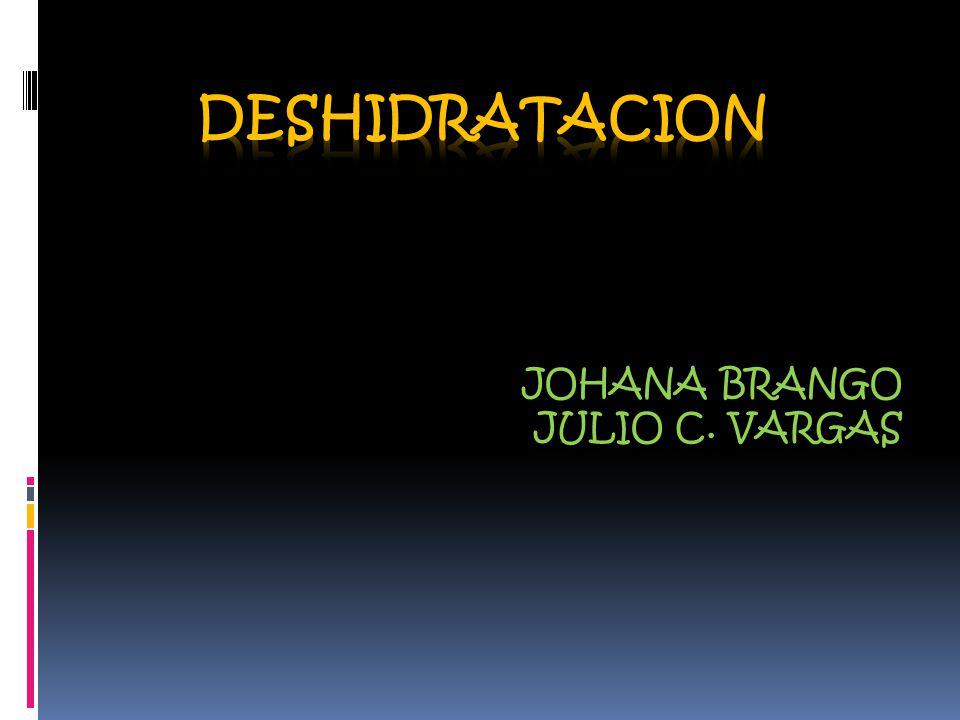 JOHANA BRANGO JULIO C. VARGAS