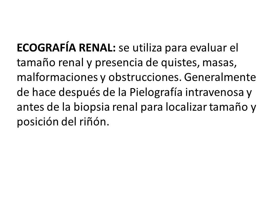 ECOGRAFÍA RENAL: se utiliza para evaluar el tamaño renal y presencia de quistes, masas, malformaciones y obstrucciones.