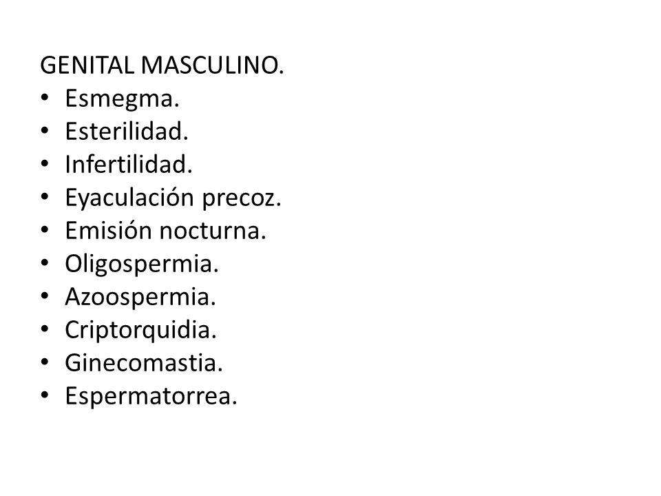 GENITAL MASCULINO. Esmegma. Esterilidad. Infertilidad. Eyaculación precoz. Emisión nocturna. Oligospermia.