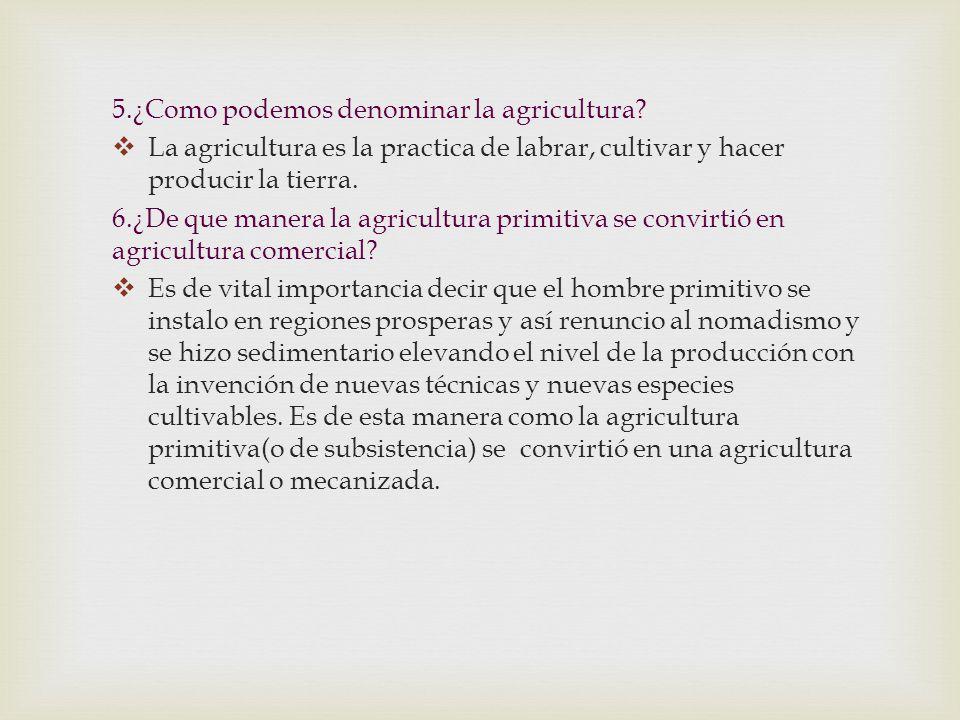 5.¿Como podemos denominar la agricultura