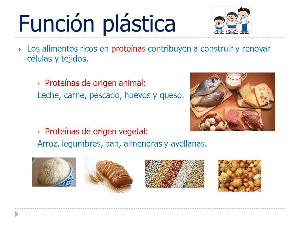 Desayuno castellano desayuno sano ppt video online descargar - Alimentos vegetales ricos en proteinas ...