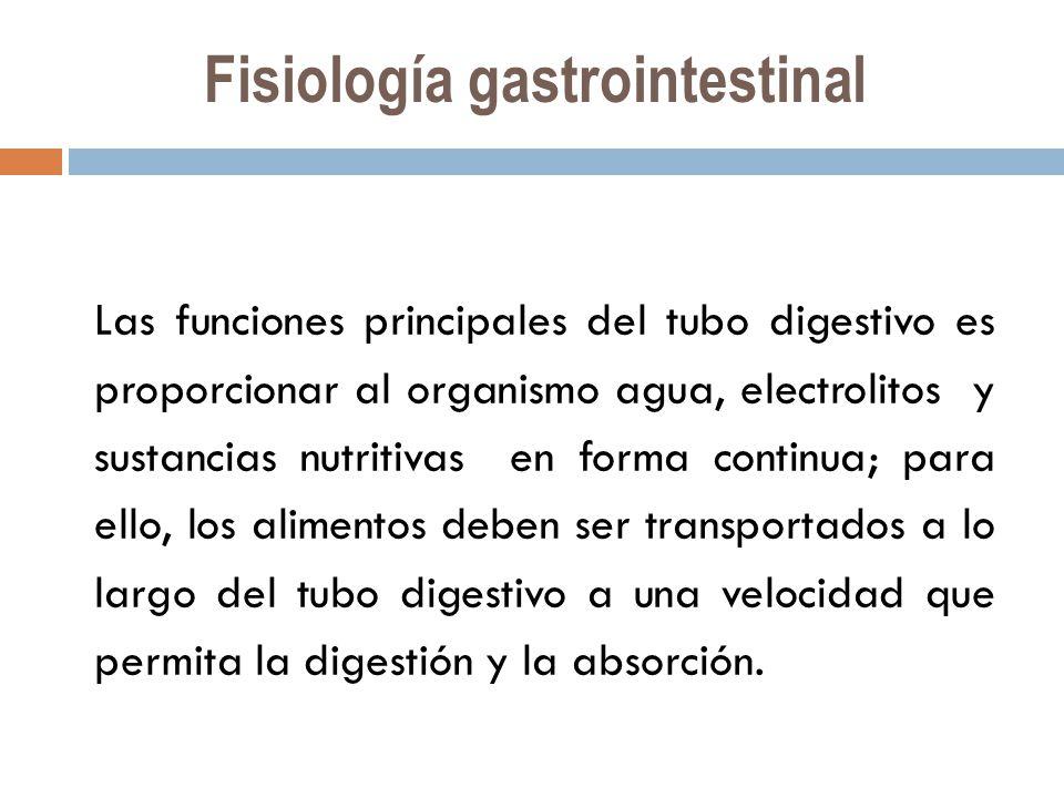 Fantástico Anatomía Y Fisiología Capítulo 9 De Prueba Respuestas ...