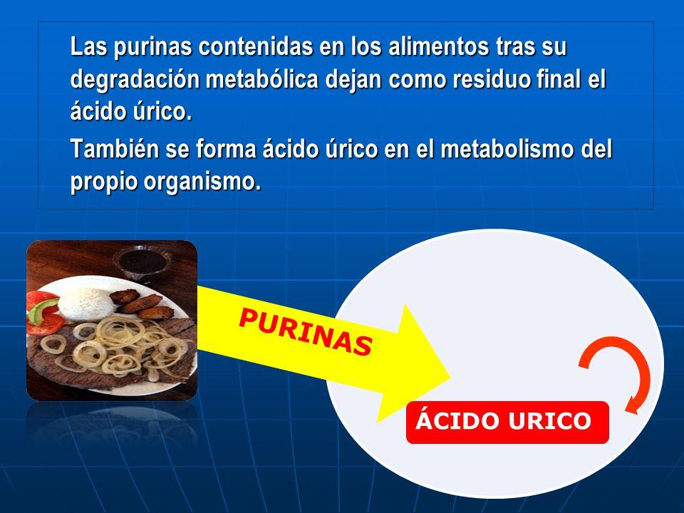 problemas que causa el acido urico en nuestro organismo acido urico legumbres bajar acido urico en sangre