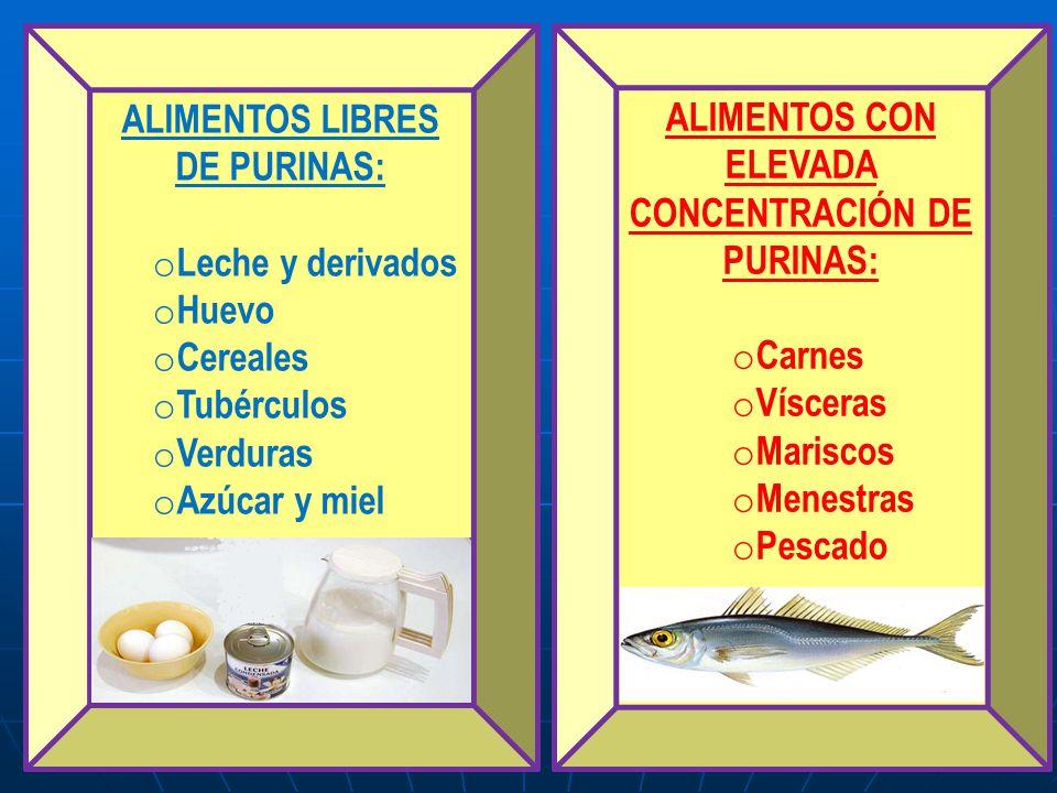Dieta hipocalorica dieta terap utica nutricionalmente adecuada dise ada para provocar p rdida de - Alimentos ricos en purinas acido urico ...