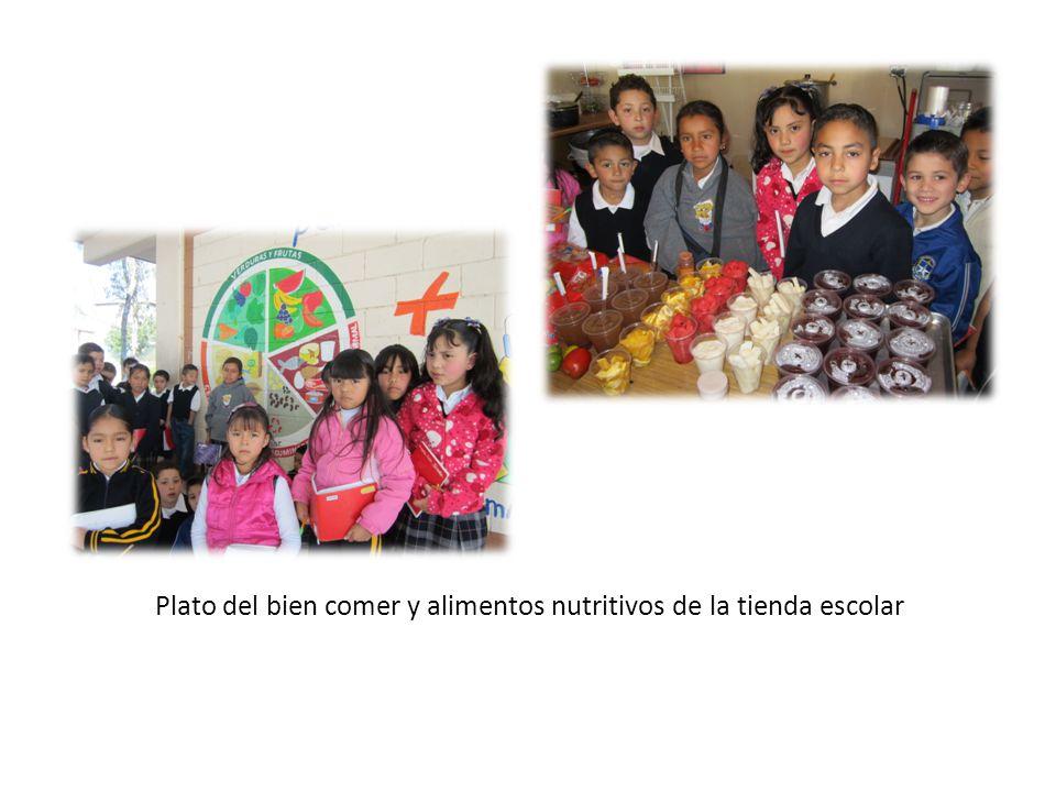 Plato del bien comer y alimentos nutritivos de la tienda escolar