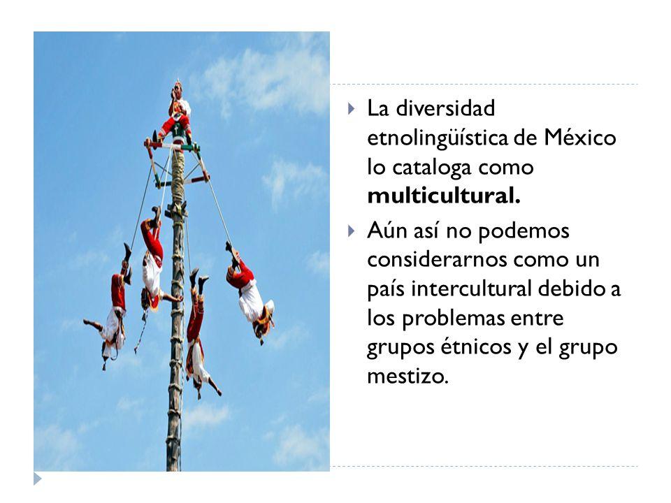 La diversidad etnolingüística de México lo cataloga como multicultural.