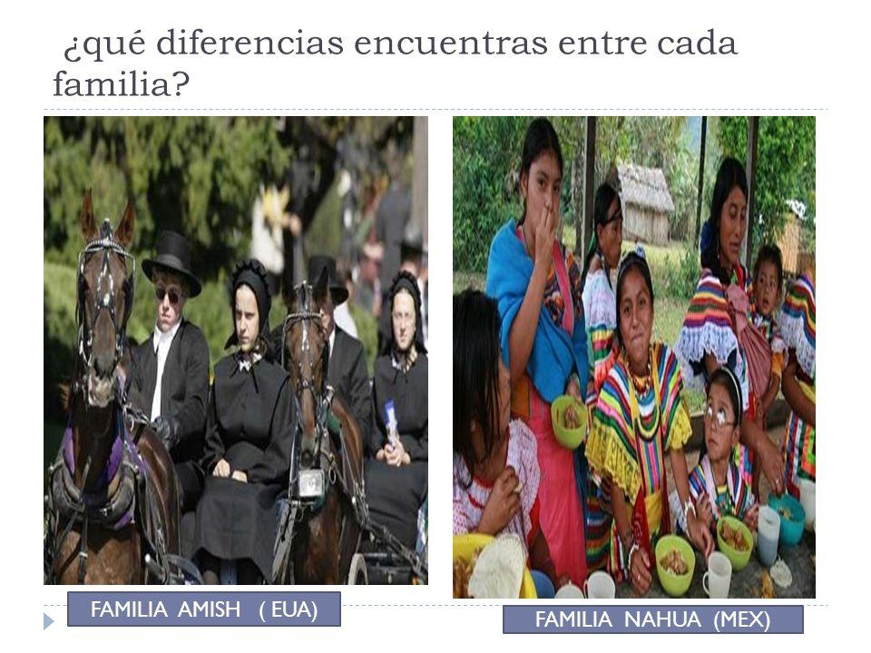 ¿qué diferencias encuentras entre cada familia