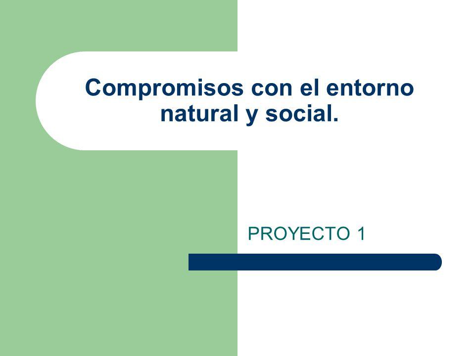 Compromisos con el entorno natural y social.