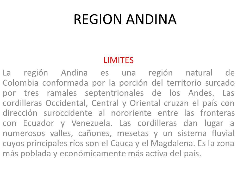 REGION ANDINA LIMITES.