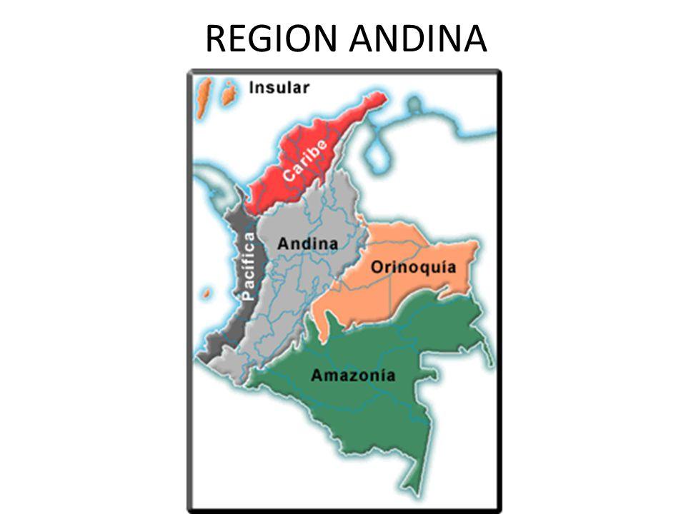 REGION ANDINA LIMITES La regin Andina es una regin natural de