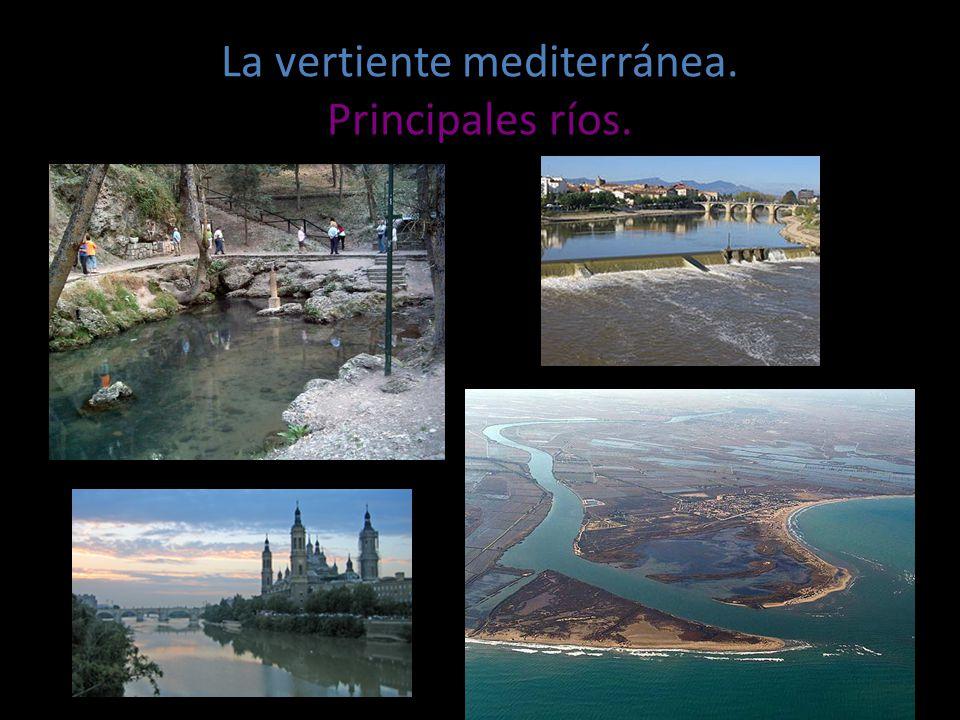 La vertiente mediterr nea ppt video online descargar - La mediterranea ...