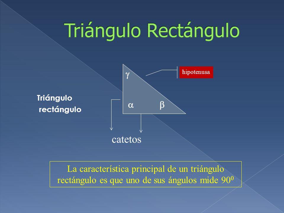 Triángulo Rectángulo catetos   