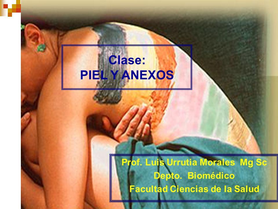 Prof. Luis Urrutia Morales Mg Sc Facultad Ciencias de la Salud