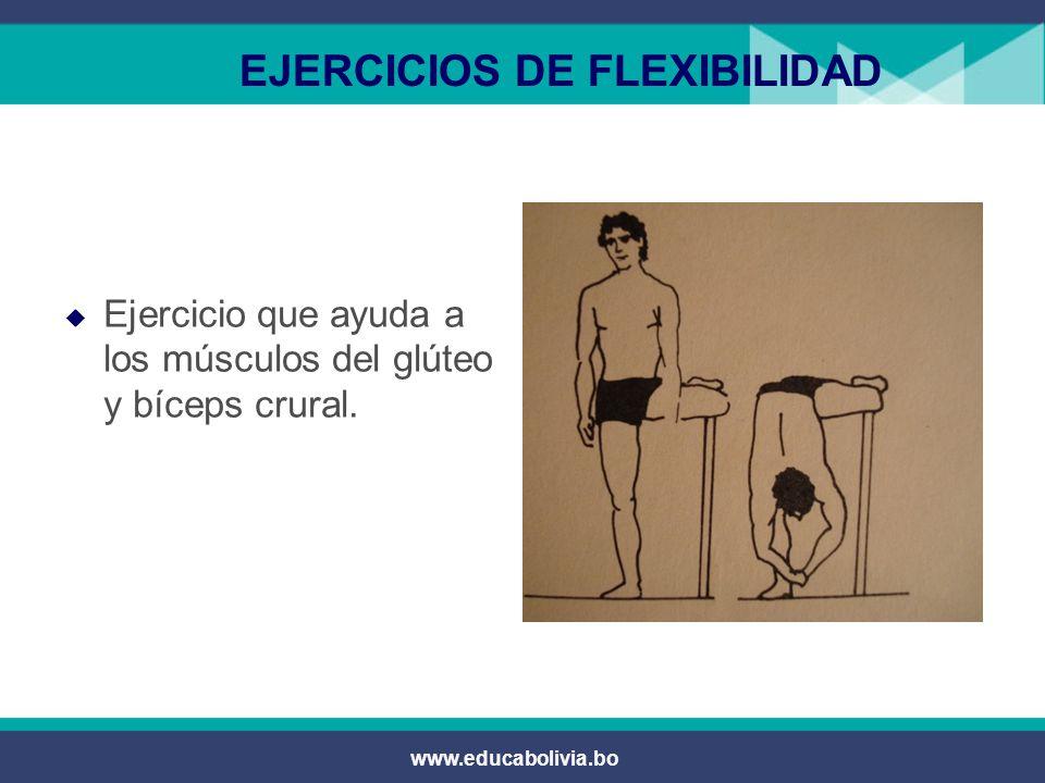 EJERCICIOS DE FLEXIBILIDAD
