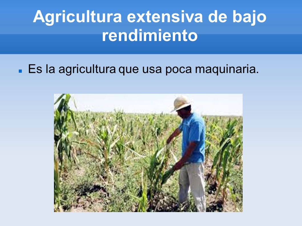 Agricultura extensiva de bajo rendimiento
