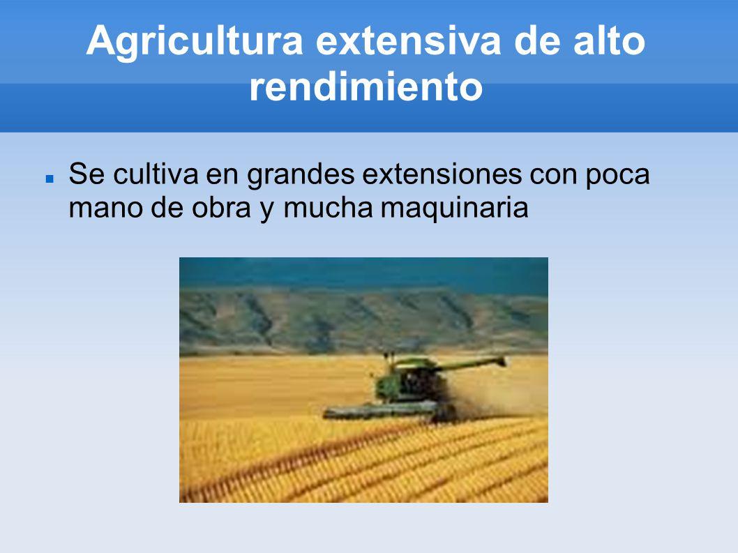 Agricultura extensiva de alto rendimiento