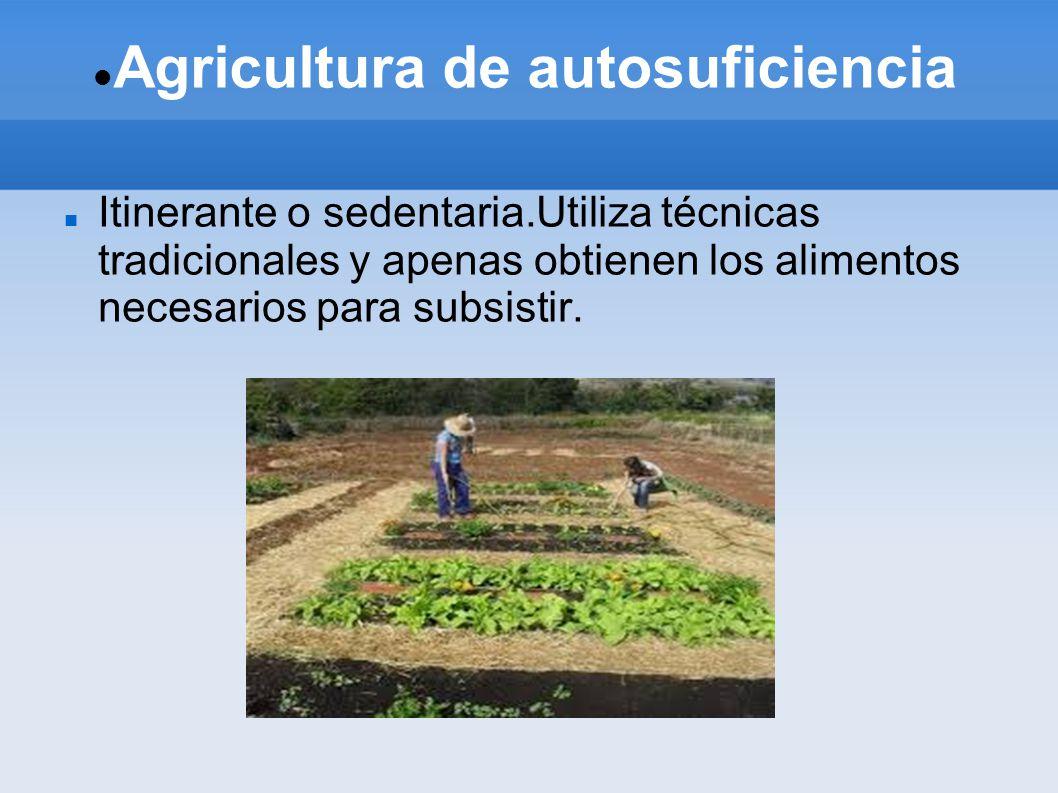 Agricultura de autosuficiencia