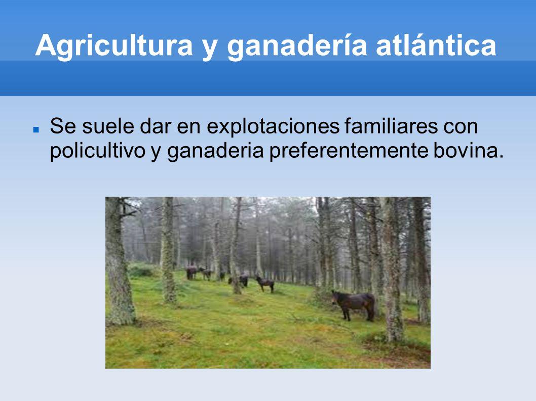 Agricultura y ganadería atlántica