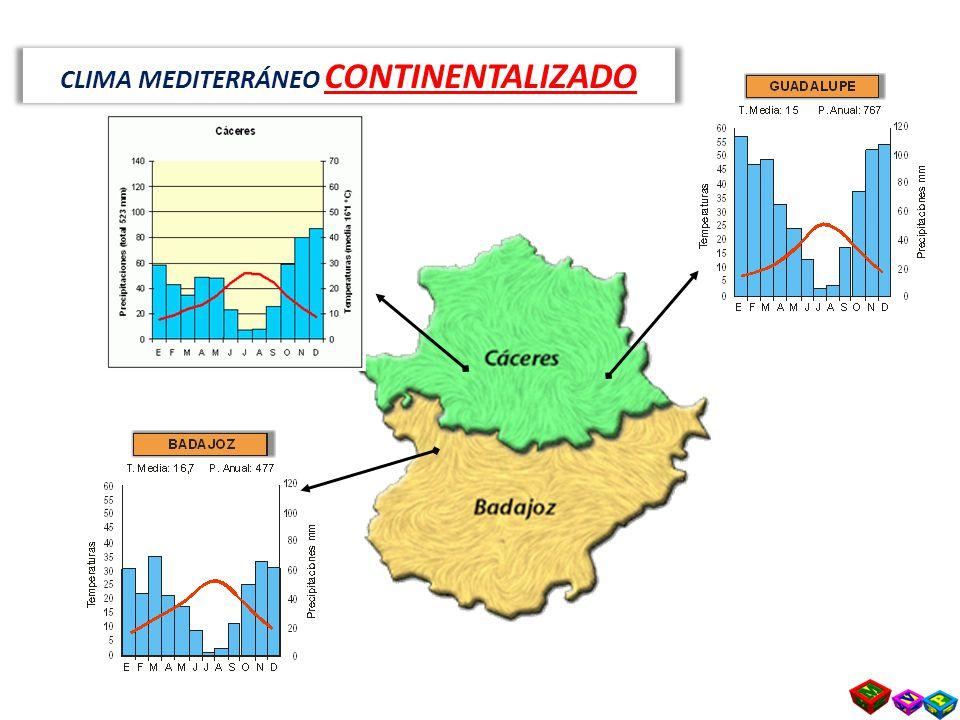 Tipos de climas en espa a ppt video online descargar for Clima mediterraneo de interior