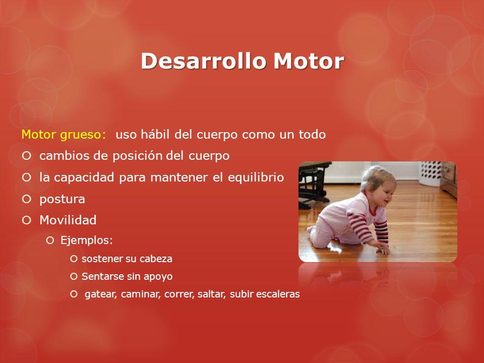 Desarrollo Motor Motor grueso: uso hábil del cuerpo como un todo