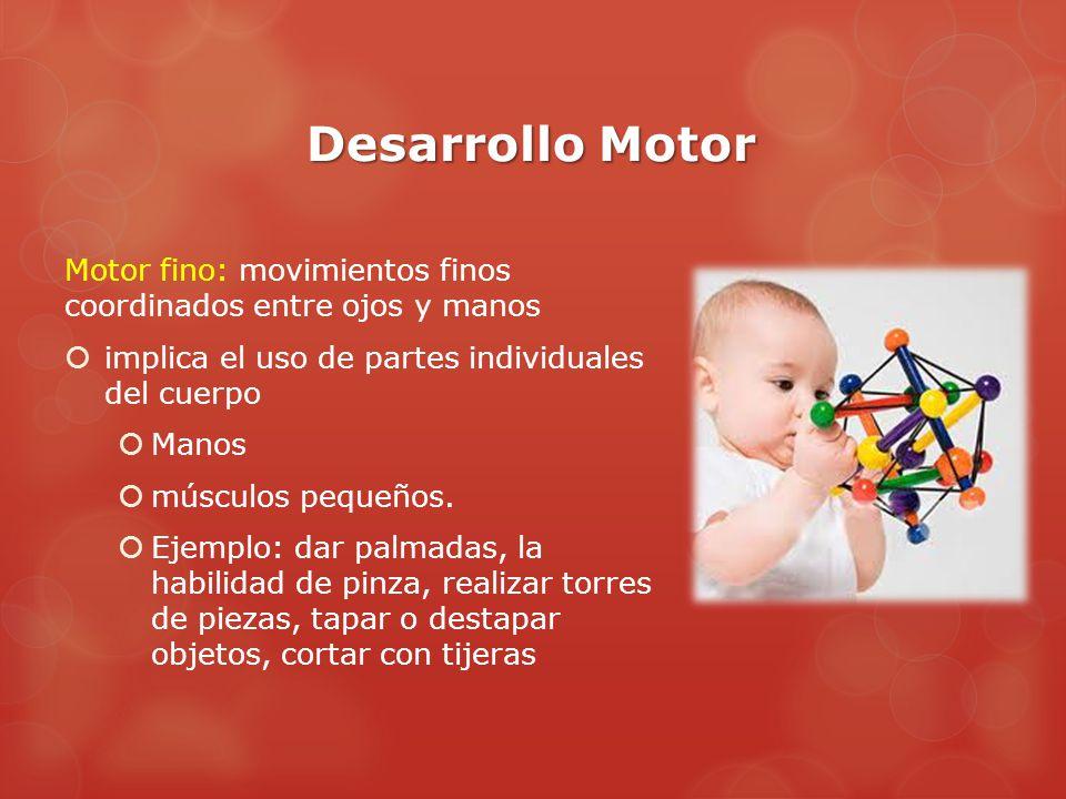 Desarrollo Motor Motor fino: movimientos finos coordinados entre ojos y manos. implica el uso de partes individuales del cuerpo.