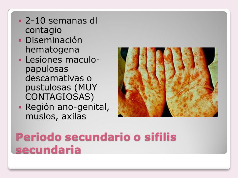 Periodo secundario o sifilis secundaria
