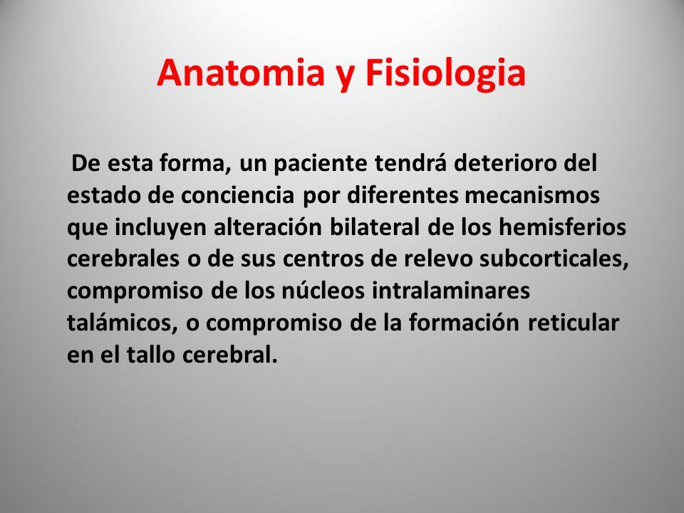 Bonito Anatomía Y Fisiología De La Meningitis Imagen - Anatomía de ...