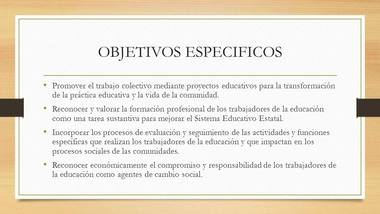OBJETIVOS ESPECIFICOS - ppt video online descargar