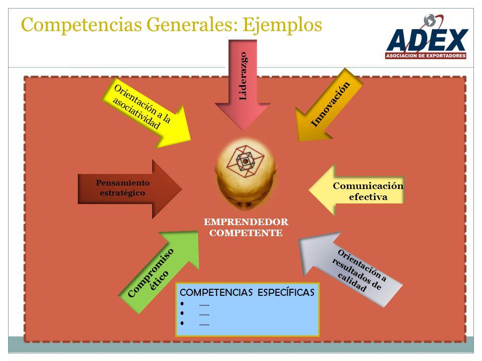 Competencias Generales: Ejemplos