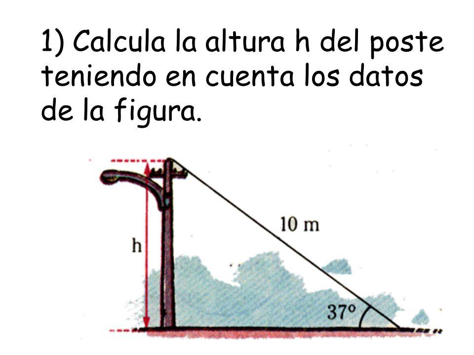 1) Calcula la altura h del poste teniendo en cuenta los datos de la figura.