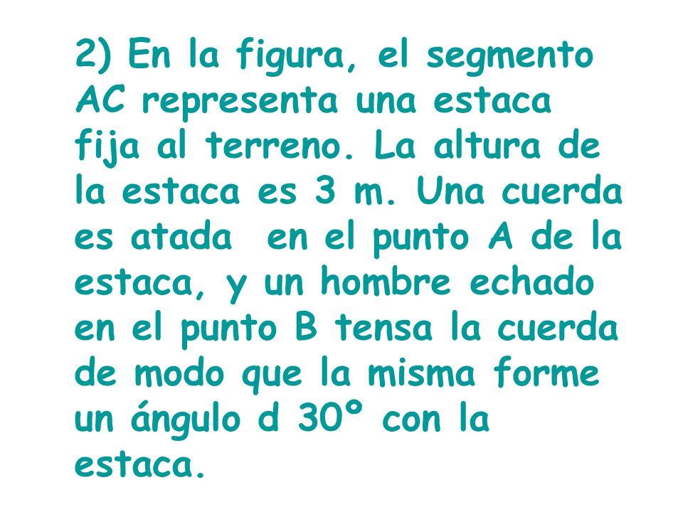 2) En la figura, el segmento AC representa una estaca fija al terreno