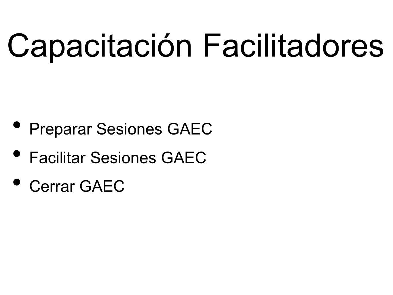 Capacitación Facilitadores