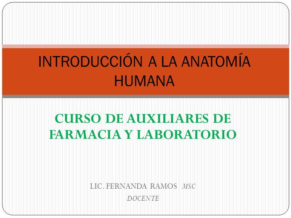 INTRODUCCIÓN A LA ANATOMÍA HUMANA - ppt video online descargar