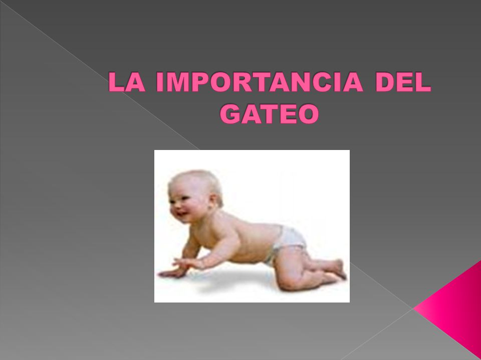 LA IMPORTANCIA DEL GATEO
