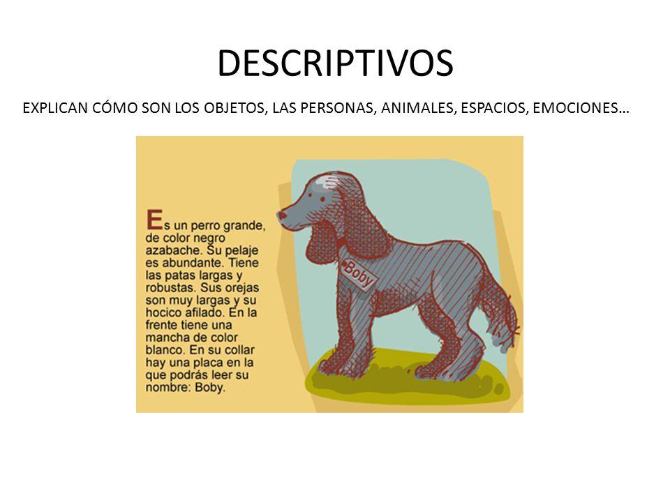 DESCRIPTIVOS EXPLICAN CÓMO SON LOS OBJETOS, LAS PERSONAS, ANIMALES, ESPACIOS, EMOCIONES…