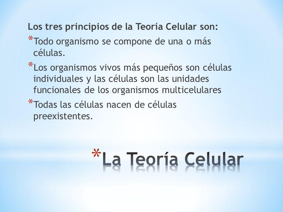 La Teoría Celular Los tres principios de la Teoría Celular son: