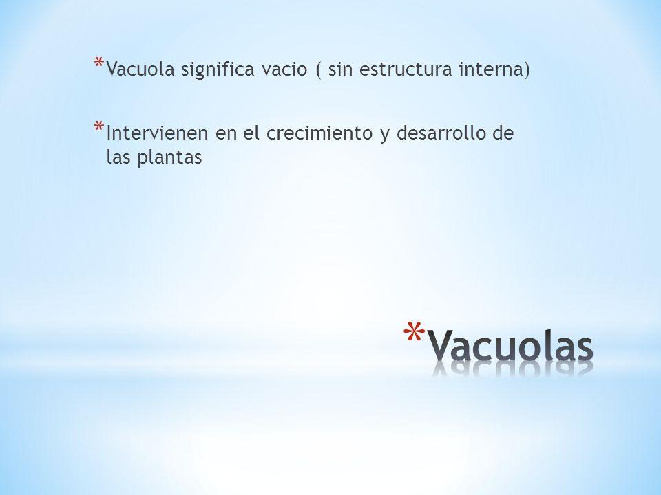 Vacuolas Vacuola significa vacio ( sin estructura interna)