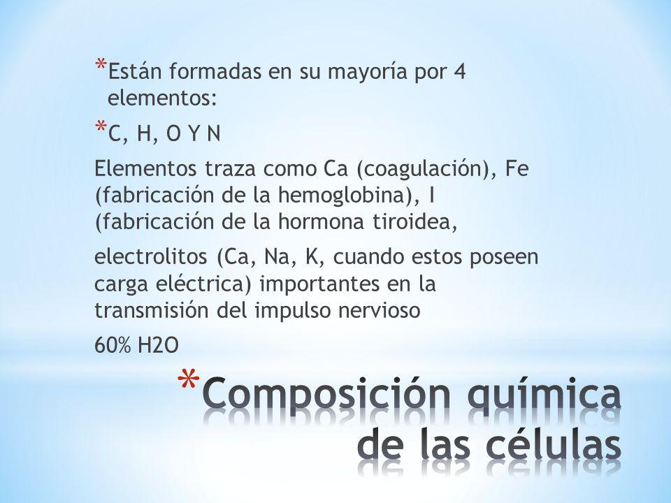 Composición química de las células