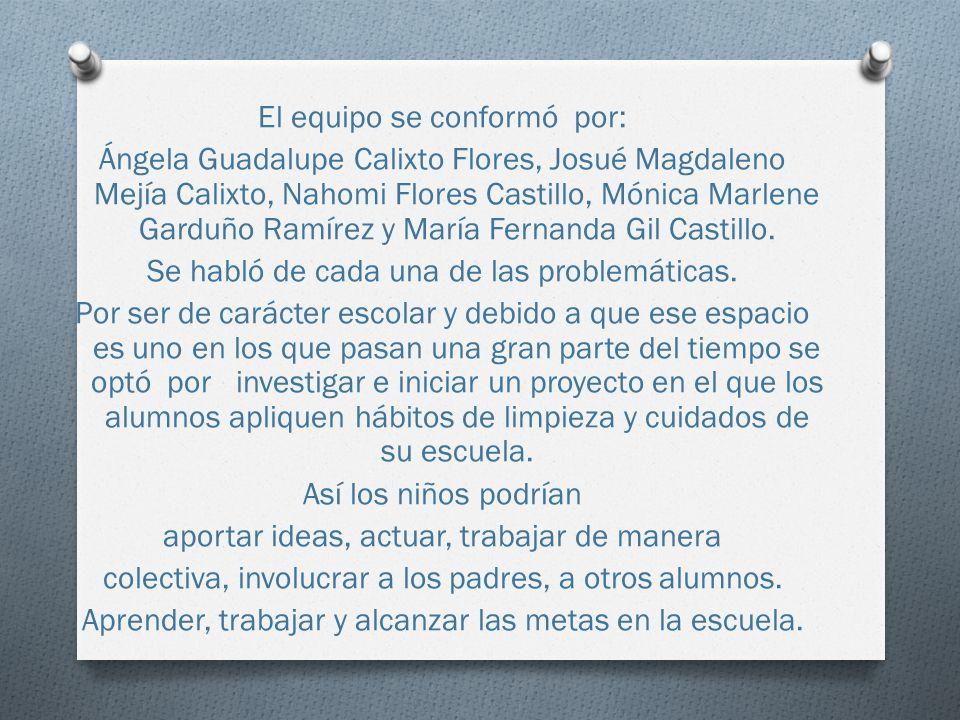 El equipo se conformó por: Ángela Guadalupe Calixto Flores, Josué Magdaleno Mejía Calixto, Nahomi Flores Castillo, Mónica Marlene Garduño Ramírez y María Fernanda Gil Castillo.