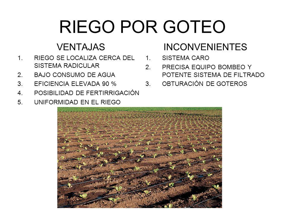 Sistemas de riego en agricultura ppt descargar - Sistema riego goteo ...