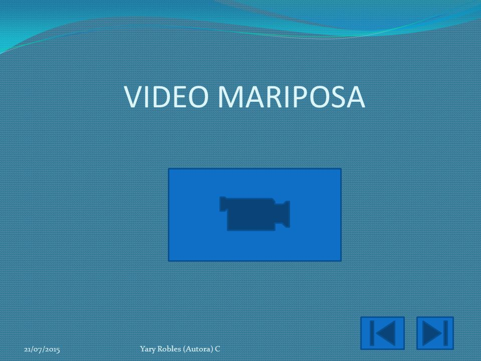 VIDEO MARIPOSA 18/04/2017 Yary Robles (Autora) C