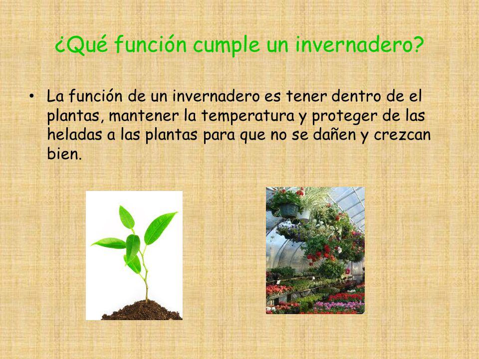 construyendo un invernadero saludable ppt descargar On plantas en maceta que no temen las heladas