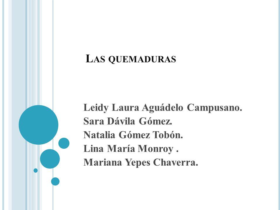 Las quemaduras Leidy Laura Aguádelo Campusano. Sara Dávila Gómez.